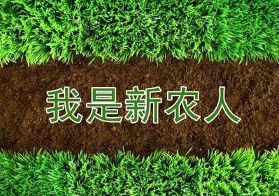 【陕西勉县】鹰计划.新农人风采