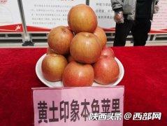 """""""小""""苹果""""大""""产业 全国"""