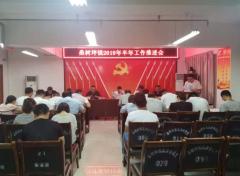 韩城市桑树坪镇召开2019年上半年工作汇报会