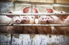 国务院再出招,除了猪肉