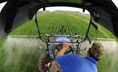 张红宇:对中国农民的重新认识