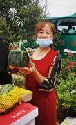渭南蒲城:抗疫助农