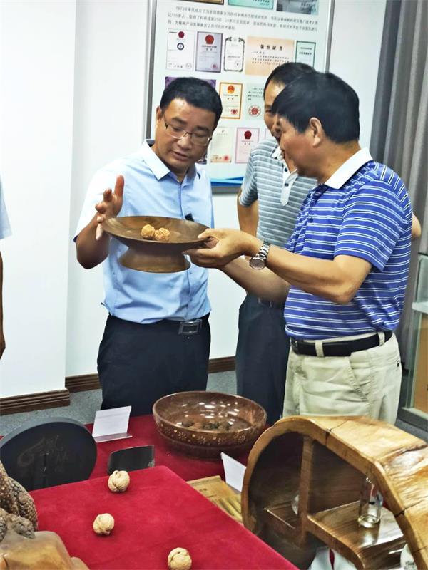商洛市委常委、副市长胡宏一行深入商洛核桃主题馆调研