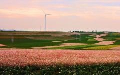 陕西定边县打造新兴产业
