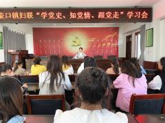陕西宜川:壶口镇妇联举